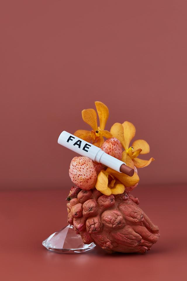 fae-home-toonude-lipstick