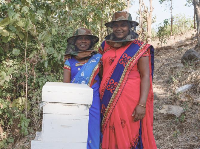 utmt_beekeeper3